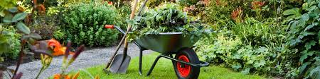 Domestic Gardening Services from Maintenance Services Direct