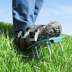 Lawn Spike Aerator Shoes - Autumn lawn maintenance