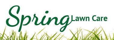 Spring Lawn Care by Maintenance Services Direct